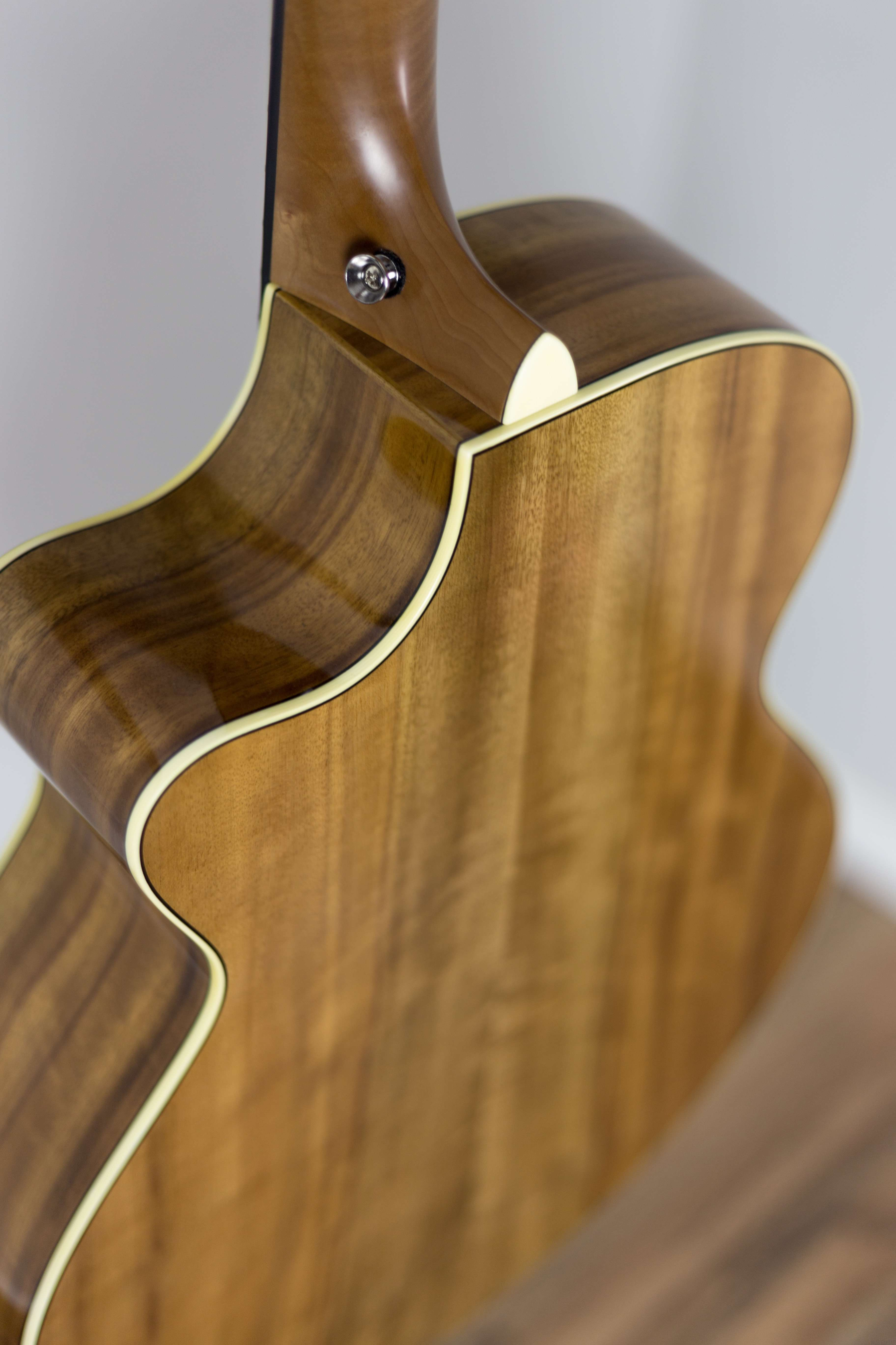 Outstanding Acoustic Guitar Anatomy Gallery - Human Anatomy Images ...