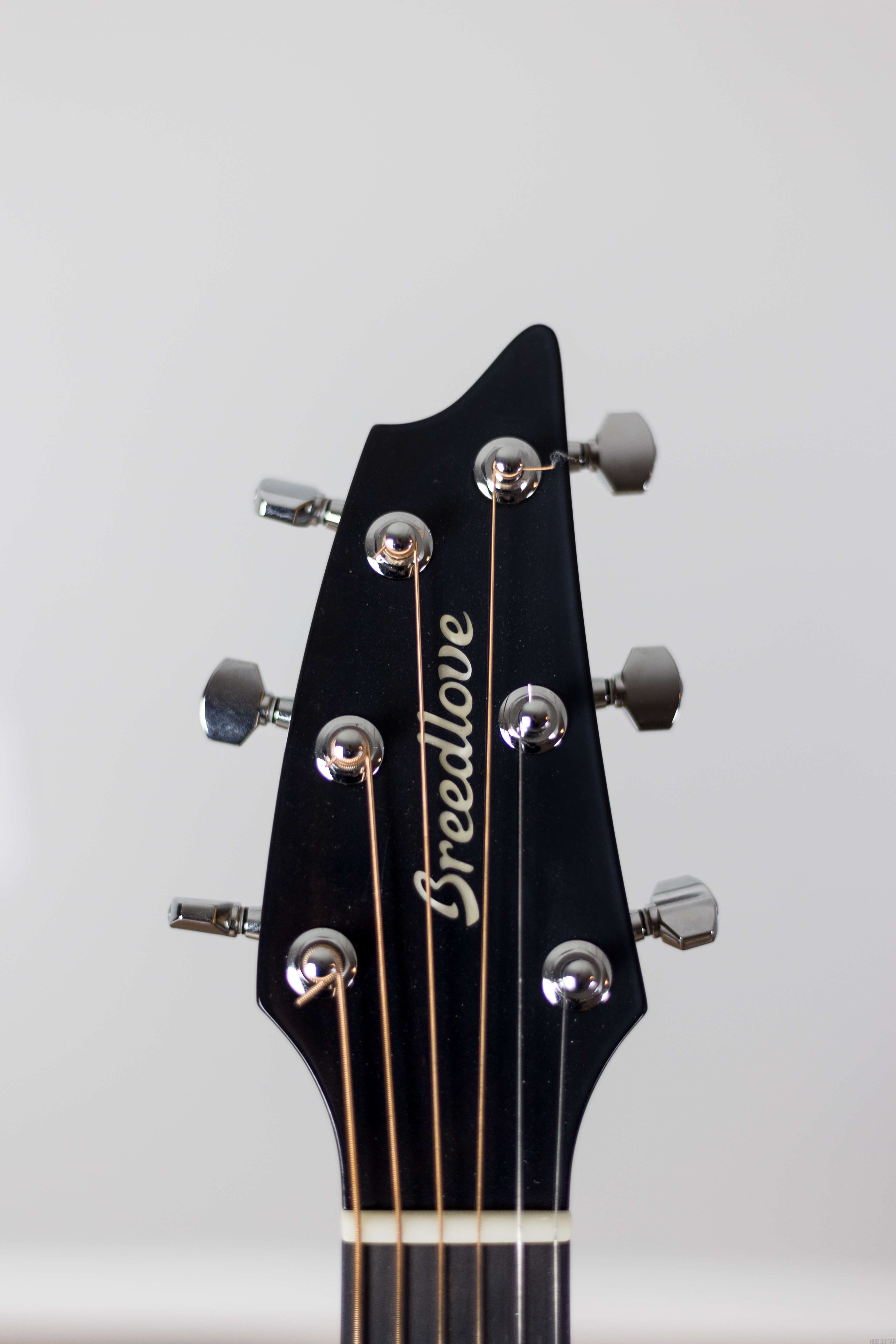 Acoustic Guitar Anatomy Diagram And Definitions Manual Guide